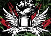 Attitude Seeds